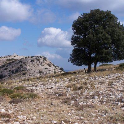 13-Llano-de-las-Tres-Carrascas
