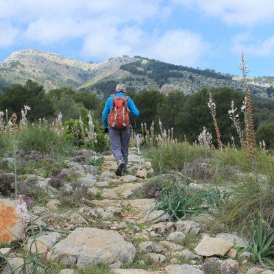 2-Piedra-del-Lagarto-camino-de-Valdelaparra